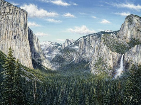 Framed Yosemite Valley Print
