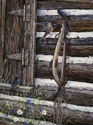 Framed Barn Swallows Print