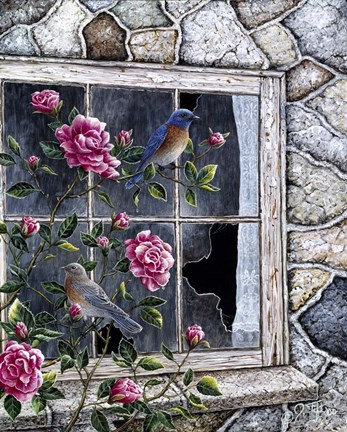 Framed Bluebirds In Window Print