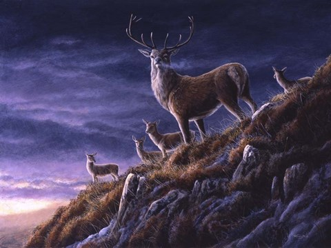 Framed Threatening Sky Red Deer Print