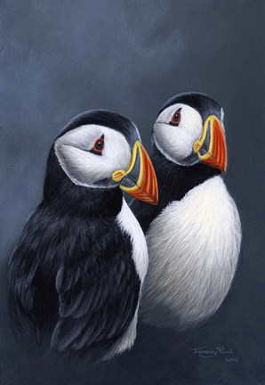 Framed Puffins Print