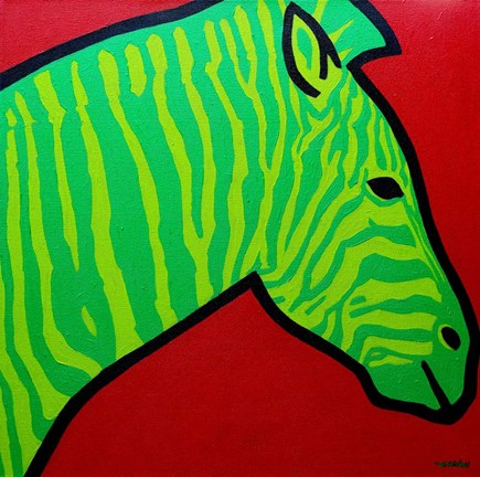 Framed Irish Zebra Print