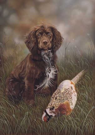 Framed Cocker Spaniel Tia Print