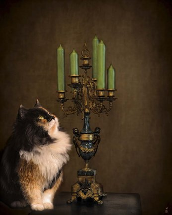 Framed Cat And The Candelabra Print