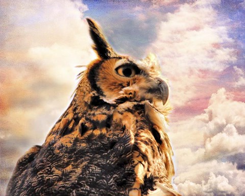 Framed Majestic Great Horned Owl Print