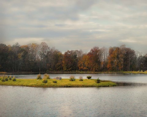 Framed Autumn Rising At The Duck Pond Print