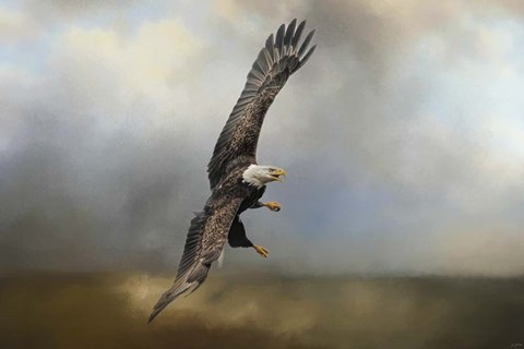 Framed Up Against The Stormy Sea Bald Eagle Print