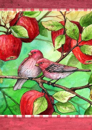 Framed Red Finches With Apples Print