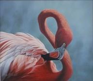 Figure 8 - Flamingo  Fine Art Print