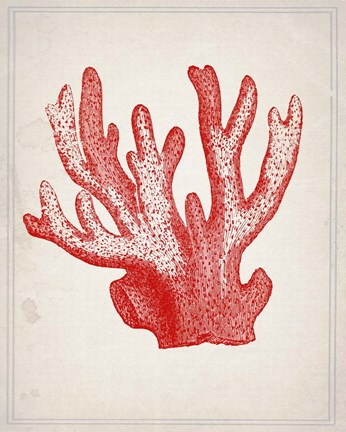 Framed Red Coral 3 Print