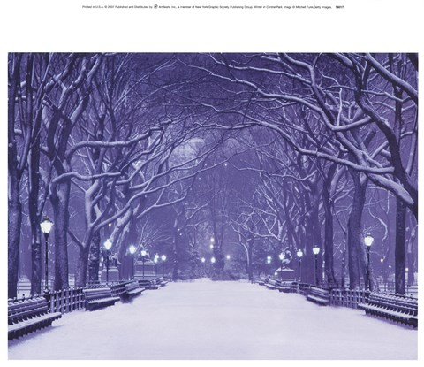 Framed Winter In Central Park Print