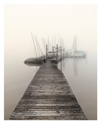 Framed Harbor Fog Print