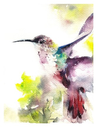 Framed Hummingbird Print