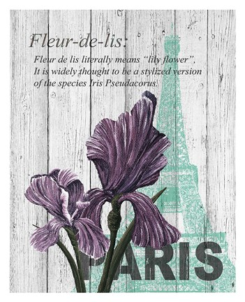 Framed Paris Iris Print