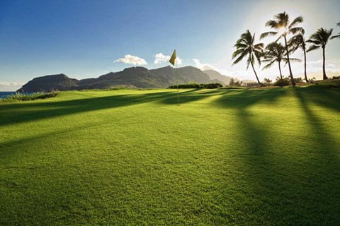 Framed Golf Course, Kauai Lagoons, Kauai, Hawaii Print