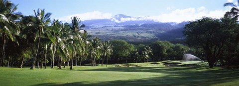 Framed Makena Golf Course, Maui, Hawaii Print