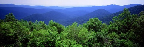 Framed Smoky Mountain National Park, Tennessee Print
