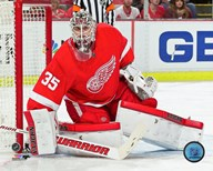 Jimmy Howard 2015-16 Action  Fine Art Print