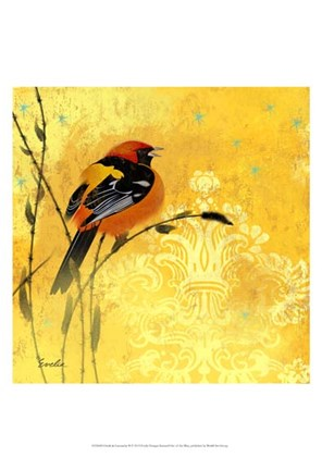 Framed Oriole & Cartouche II Print