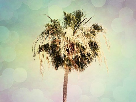 Framed Palm Trees III Print