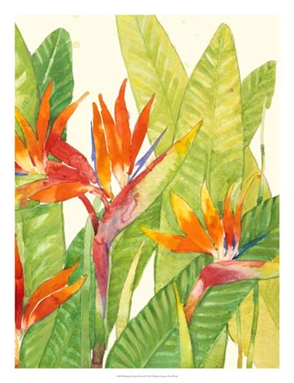 Framed Watercolor Tropical Flowers IV Print