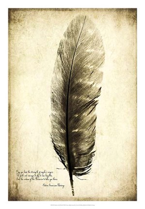 Framed Feather on the Wind I Print