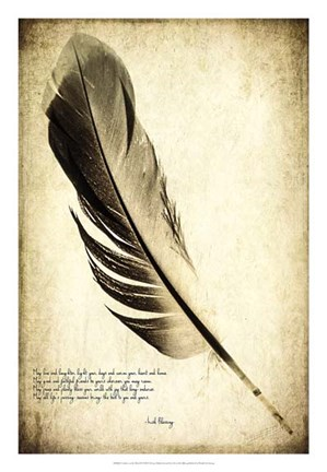 Framed Feather on the Wind IV Print