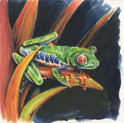 Framed Costa Rican Leaping Frog Print