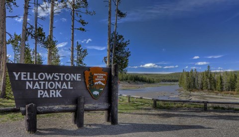 Framed Yellowstone National Park Sign Print