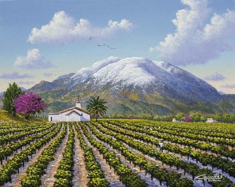 Mount St Helena Fine Art Print By Eduardo Camoes At