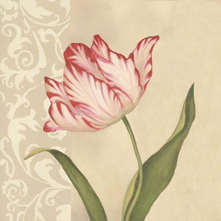 Framed Cream Tulip Print