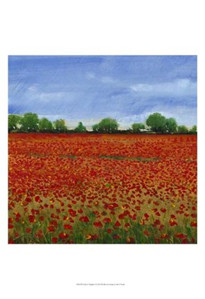 Framed Field of Poppies I Print
