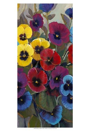 Framed Pansy Panel II Print