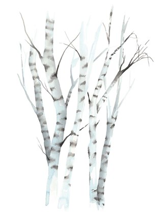 Framed Aquarelle Birches II Print