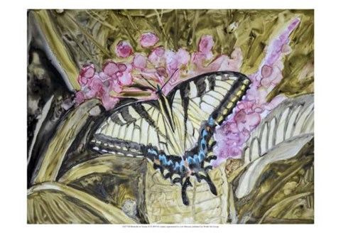 Framed Butterfly in Nature II Print