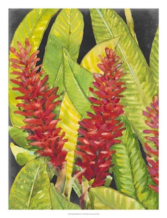 Framed Red Tropical Flowers I Print