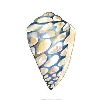 Framed Aquarelle Shells III Print