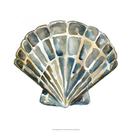 Framed Aquarelle Shells IV Print