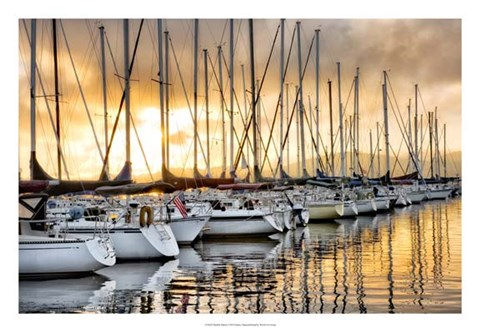 Framed Backlit Marina Print