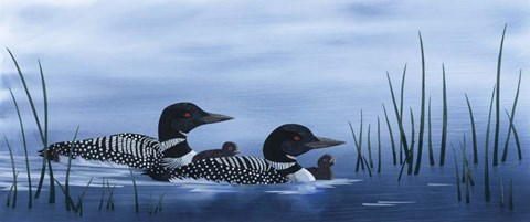 Framed Family of Loons Print