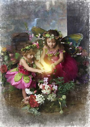 Framed Fairies Find the Light Print