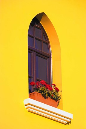 Framed Bright Yellow Wall with Red Flowers on Sill Print