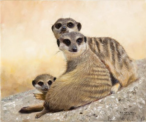 Framed Meercat Family Print