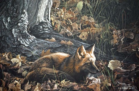 Framed Autumn Leaves- Red Fox Print