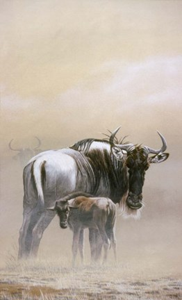 Framed Wildebeest Print