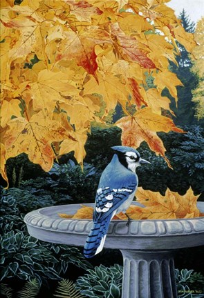 Framed Autumn Birdbath Print