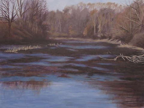 Framed Huron River Cove Print