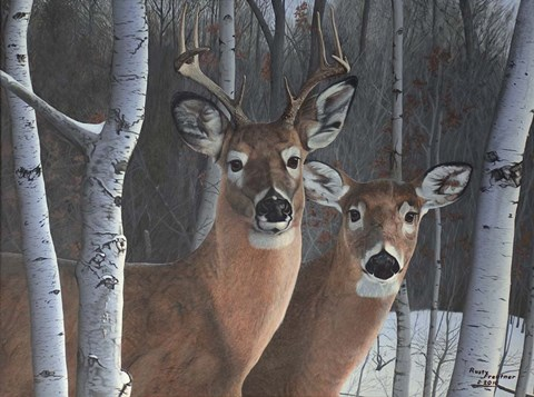 Deer Magic Fine Art Print By Rusty Frentner At