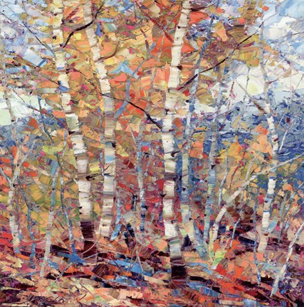 Framed Birch Colors I Print