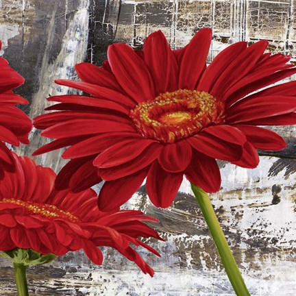 Framed Red Gerberas II Print